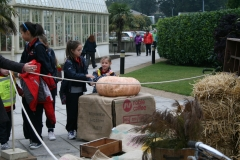 botanic garden photos 010